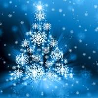 Blue holiday tree
